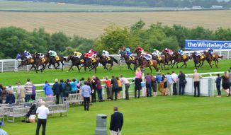 The field race towards the line in the 2.55 race